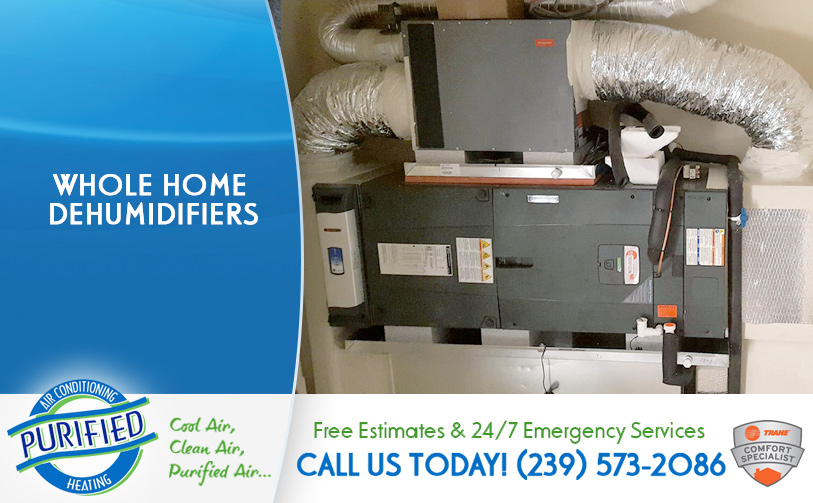 Whole Home Dehumidifiers In Fl